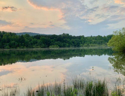 123 Walnut Rd, Blairsville, GA 30512 – Lakefront Lot – SOLD