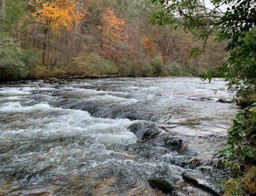 Mountain Town Creekfront Land in Ellijay, GA – SOLD